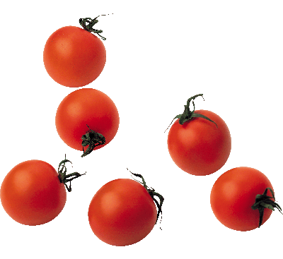 1-tomato-png-image_400x400